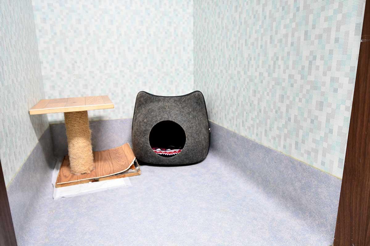 猫ちゃん用ホテル